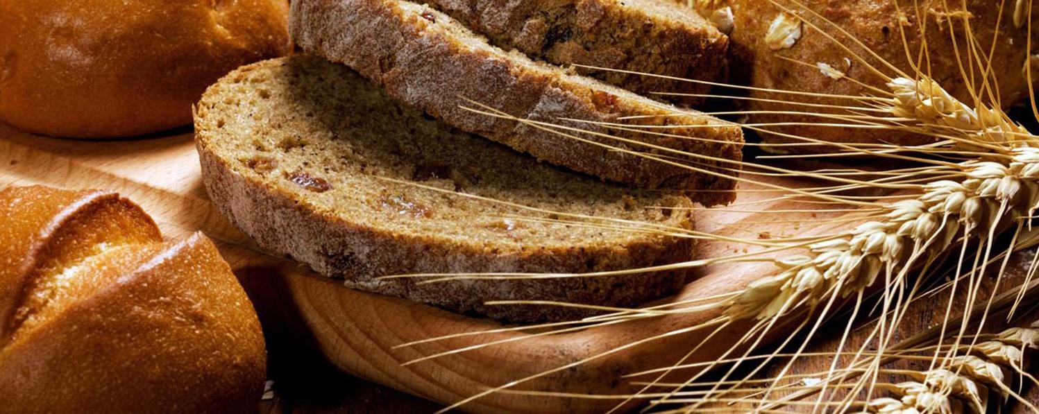نرم افزار حسابداری ویژه نانوایی