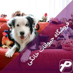 نرم افزار حسابداری فروشگاه حیوانات خانگی ، نرم افزار حسابداری اصناف